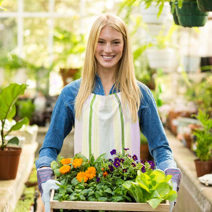 Sortiment Gartencenter